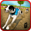Dog Race & Stunts 2016 1.4