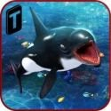 Killer Whale Beach Attack 3D 1.2