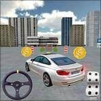 City Car Driving 3D 1.3