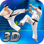 Karate Fighting Tiger 3D - 2 1.8.1
