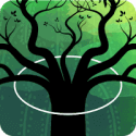 SpinTree 1.21